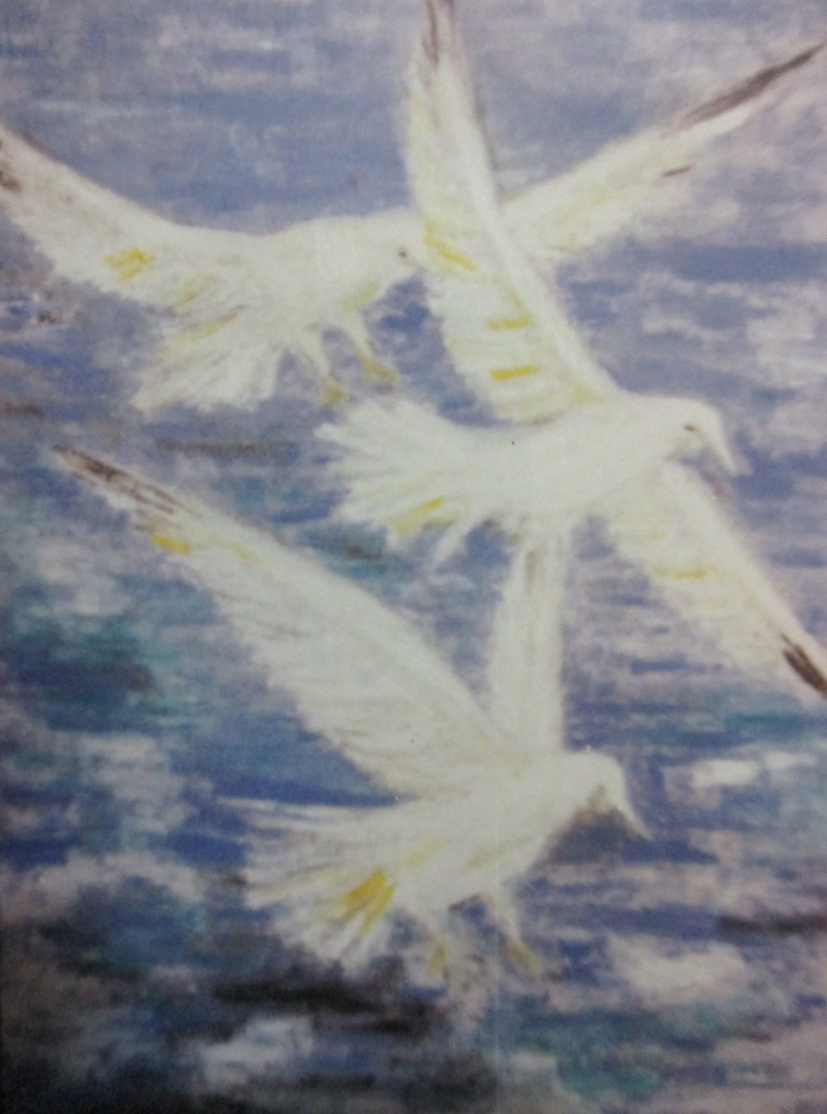 Gulls-oil on canvas-50x70cm